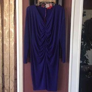 Royal Blue Ruched V- Neck Long Sleeve Dress
